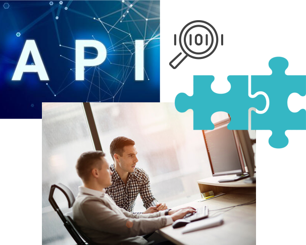 API Skiply