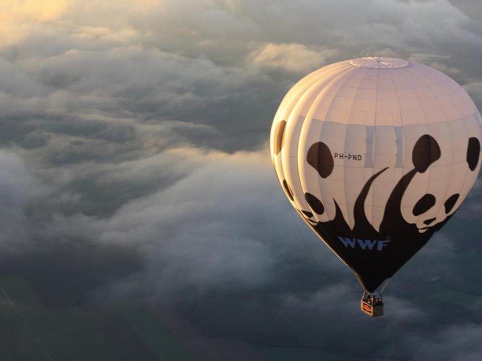 Skiply WWF France Entreprendre pour la Planète